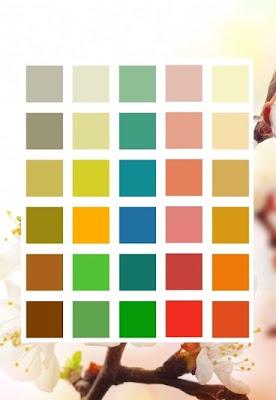 Kolory w makijażu a typ urody.