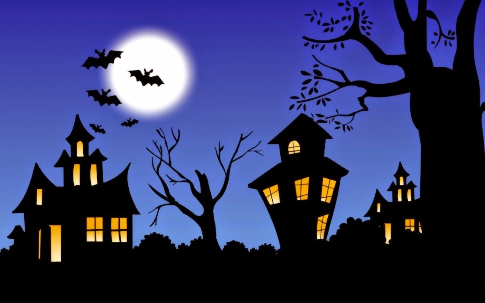 Halloween Witch Facts