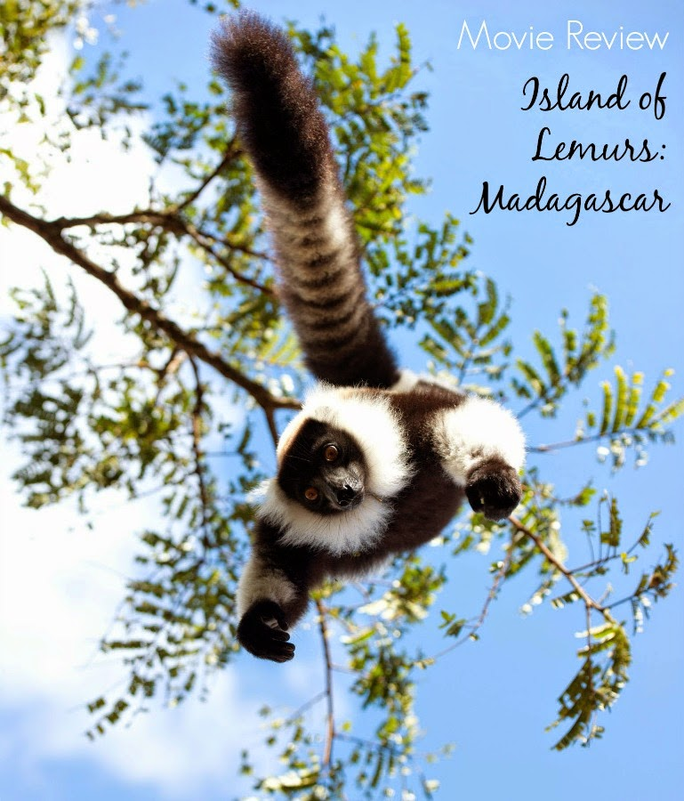 Movie Review - Island of Lemurs: Madagascar