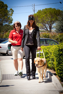 Apprentice Instructor Arleen Jordan guides CSI Miami star Eva LaRue on a blindfold walk with a yellow Lab Guide Dog