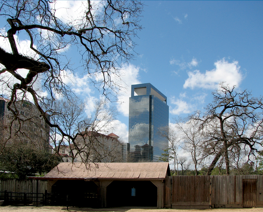Texas Medical Center from Houston Zoo