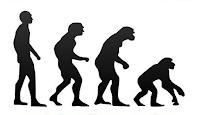 da uomo a scimmia