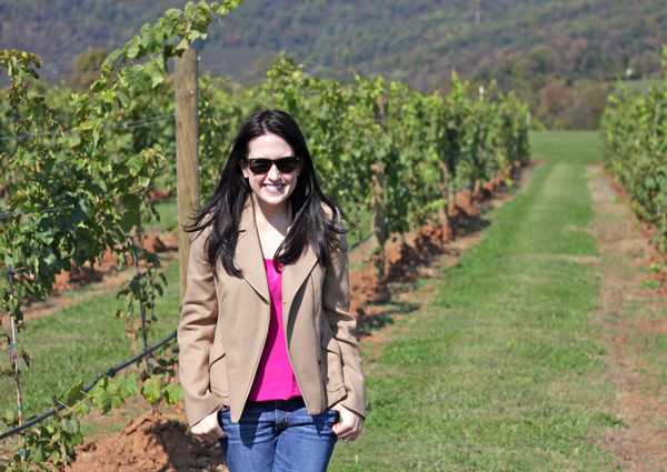 charlottesville wineries, king family vineyard