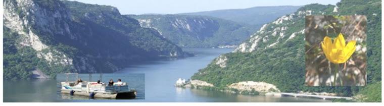 Croaziera si pescuit sportiv  in Cazanele Dunarii