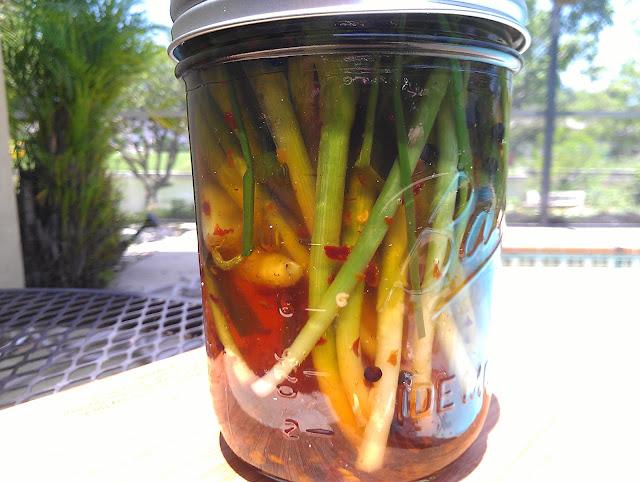 Spicy, Pickled Baby Leeks