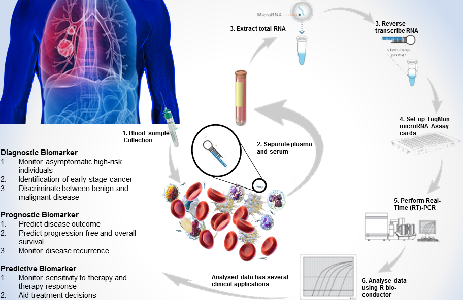 miRNA microRNA biomarker blood test lung cancer early detection in vitro diagnostics IVD