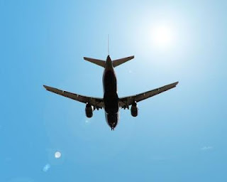 Chiropractor Fenton Michigan - Dr Erica Peabody - I am amazed everytime