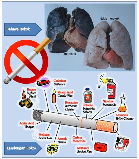 Gb. Kandungan Dan Bahaya Asap Rokok