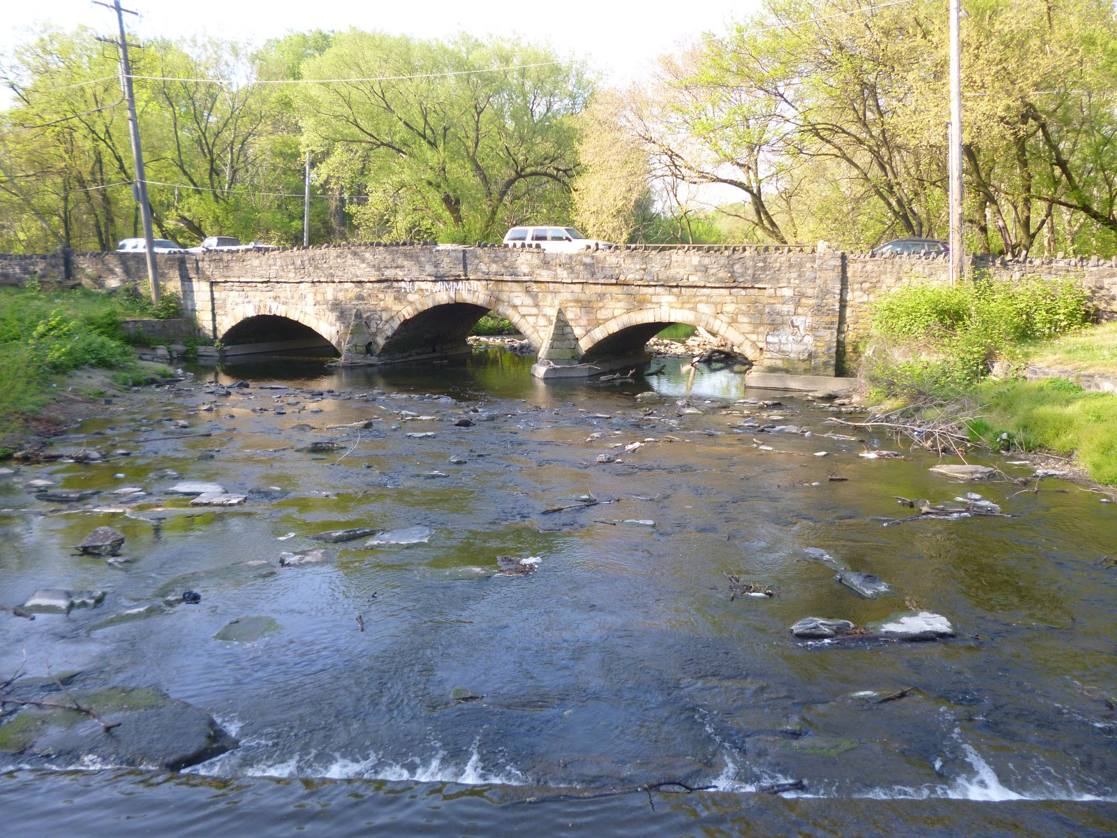 Extreme philly fishing fishing at the tacony creek the for Little fish philadelphia