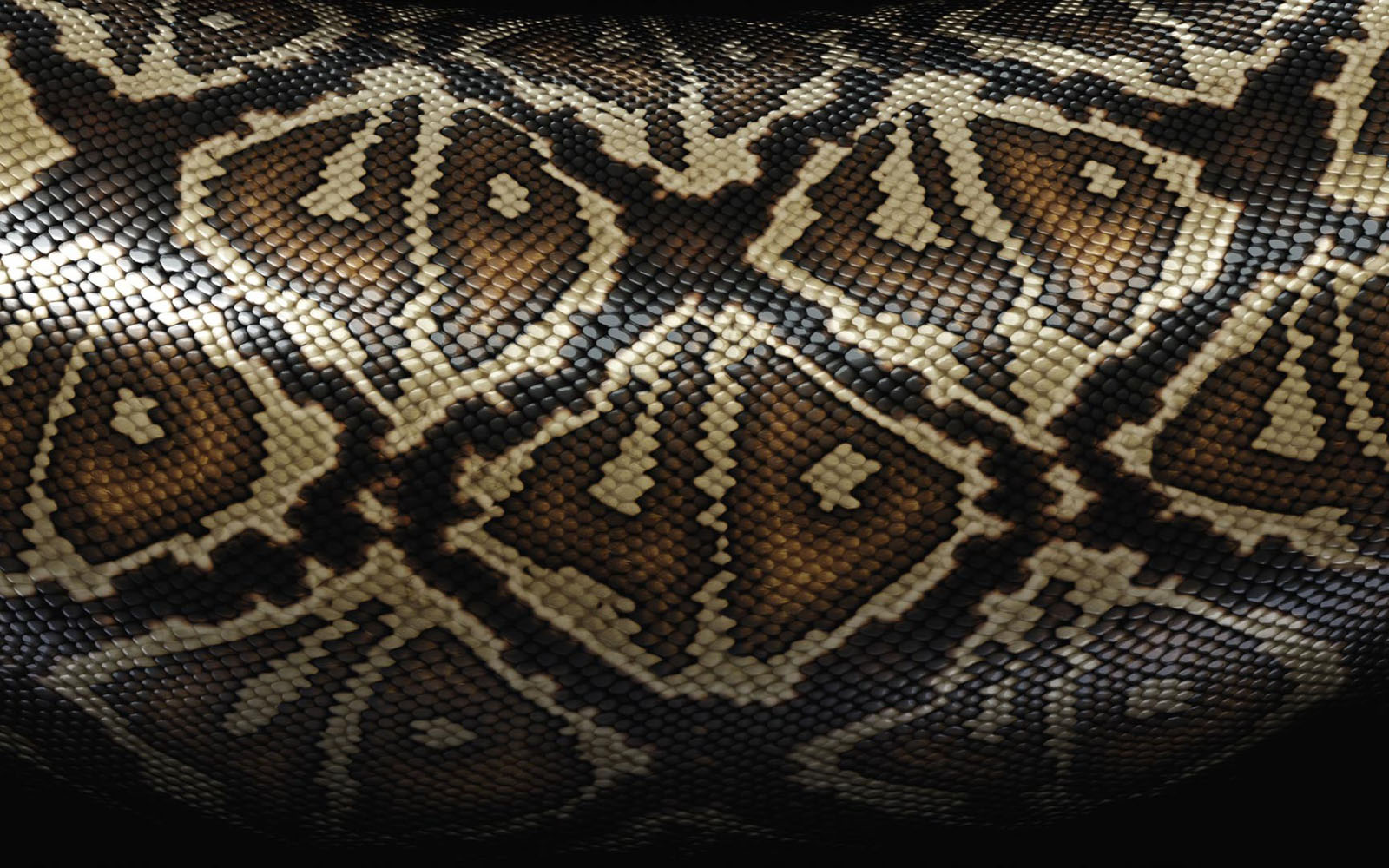 wallpapers: Snake Skin Wallpapers