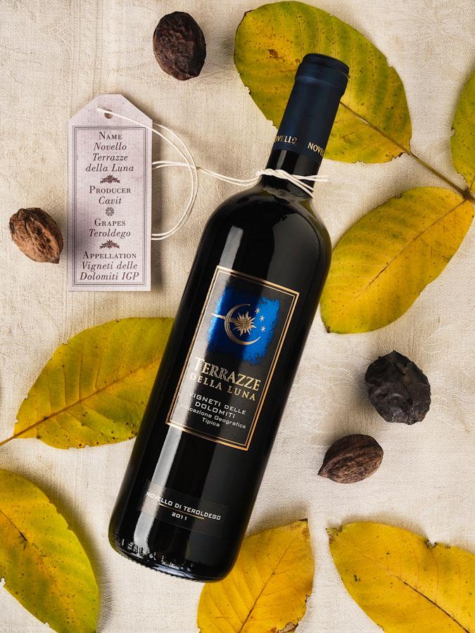vino wine Novello Teroldego Terrazze della Luna Cavit