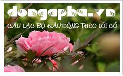 Đạo Mẫu Việt Nam  - www.dongaphu.vn