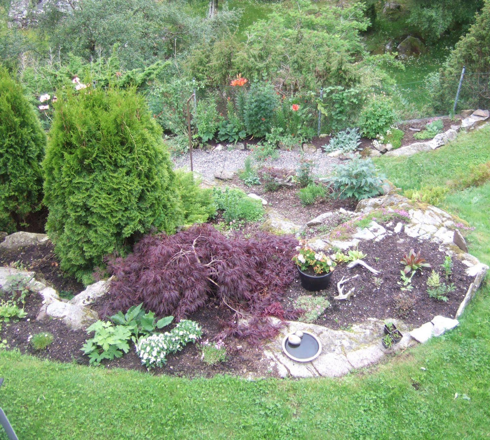 slik ser alts? hagen p? framsida ut hagen ligg i ein bratt skr?ning ...