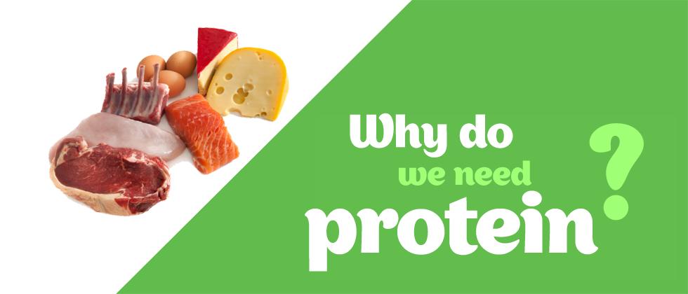 4 Sebab Kenapa Anda Perlu Mengambil Protein Lebih Banyak.