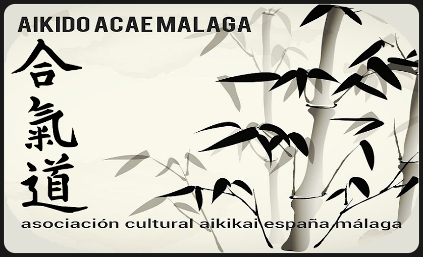 Aikido ACAE Málaga - Defensa Personal Aikido