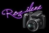 Fotógrafa e Designer