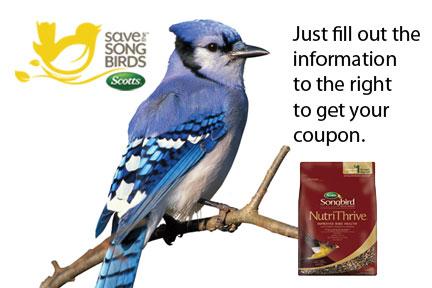 Bird food coupons printable