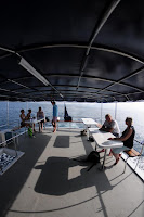 MV Angry Bird sun deck
