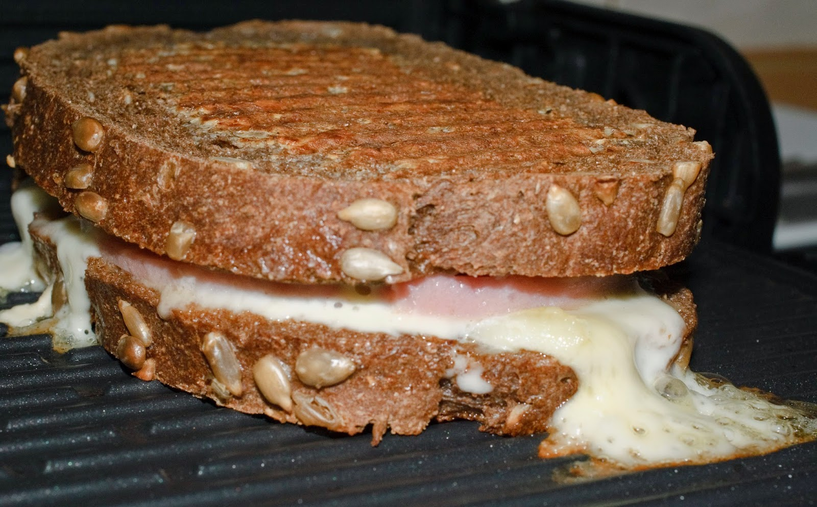 Sandwich de pavo y queso; turkey and cheese sandwich