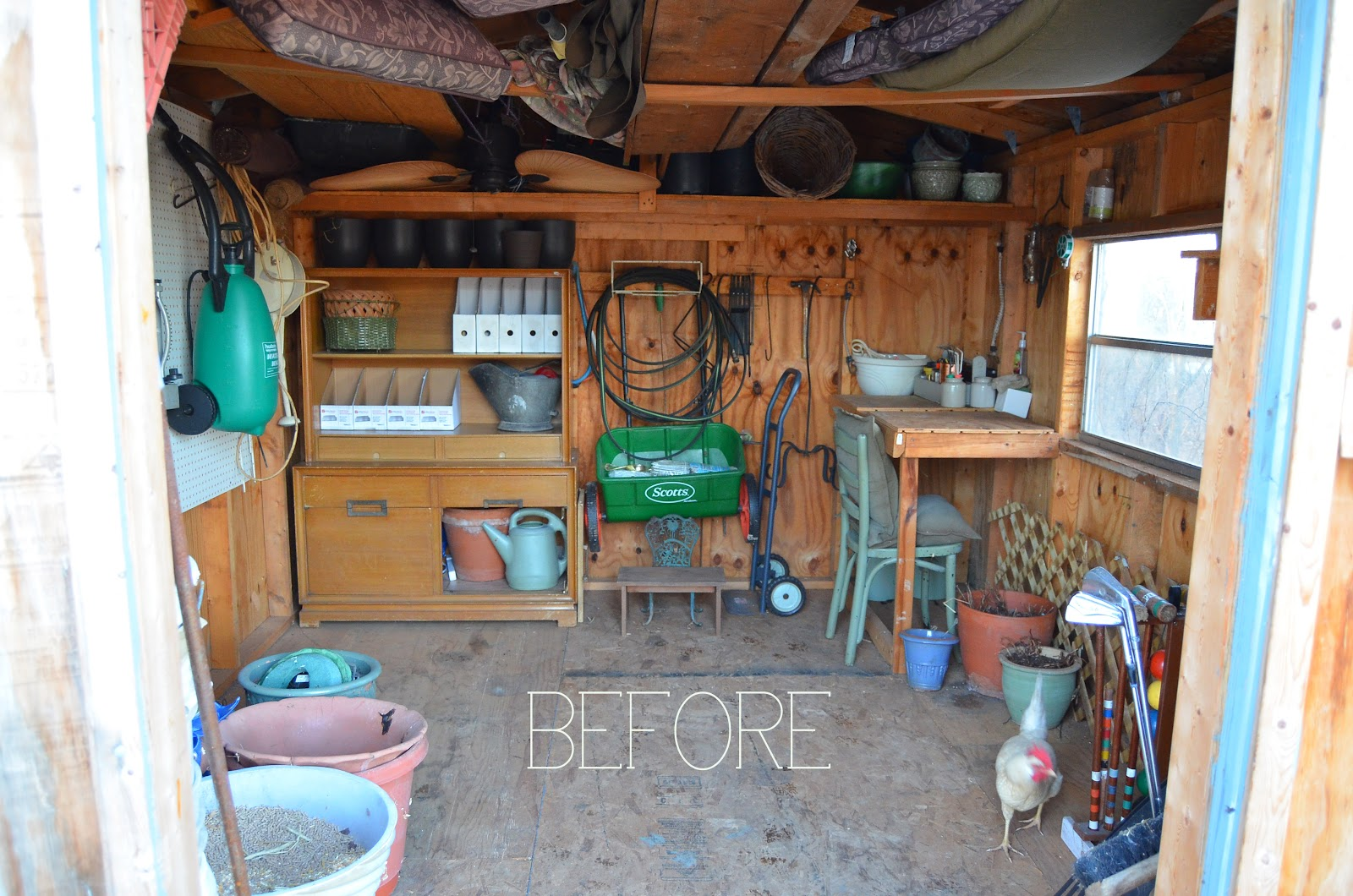 before u0026 after photography studio ahem i mean shed