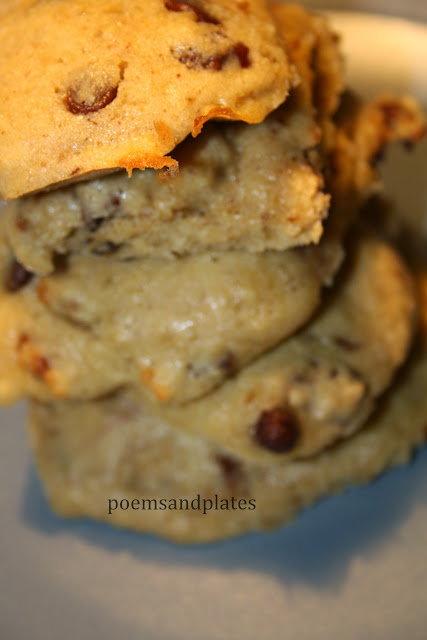Oatmeal Chocolate Chip Cakies with Walnuts and Pecans