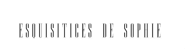 esquisiticesdesophie.blogspot.com.br/