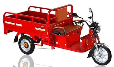 Para ver la Pagina especial con Triciclos Electricos hace Click en la imagen