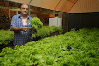 30ª Feport também teve a apresentação de alguns produtos agrícola cultivados no município