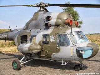 çek ordusu