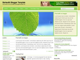 BeHealth blogger template