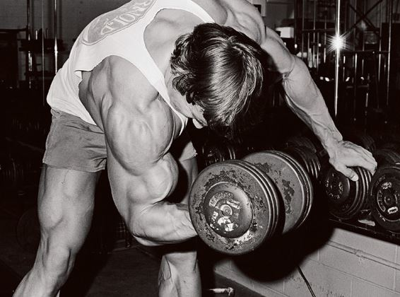 arnold concentration curls