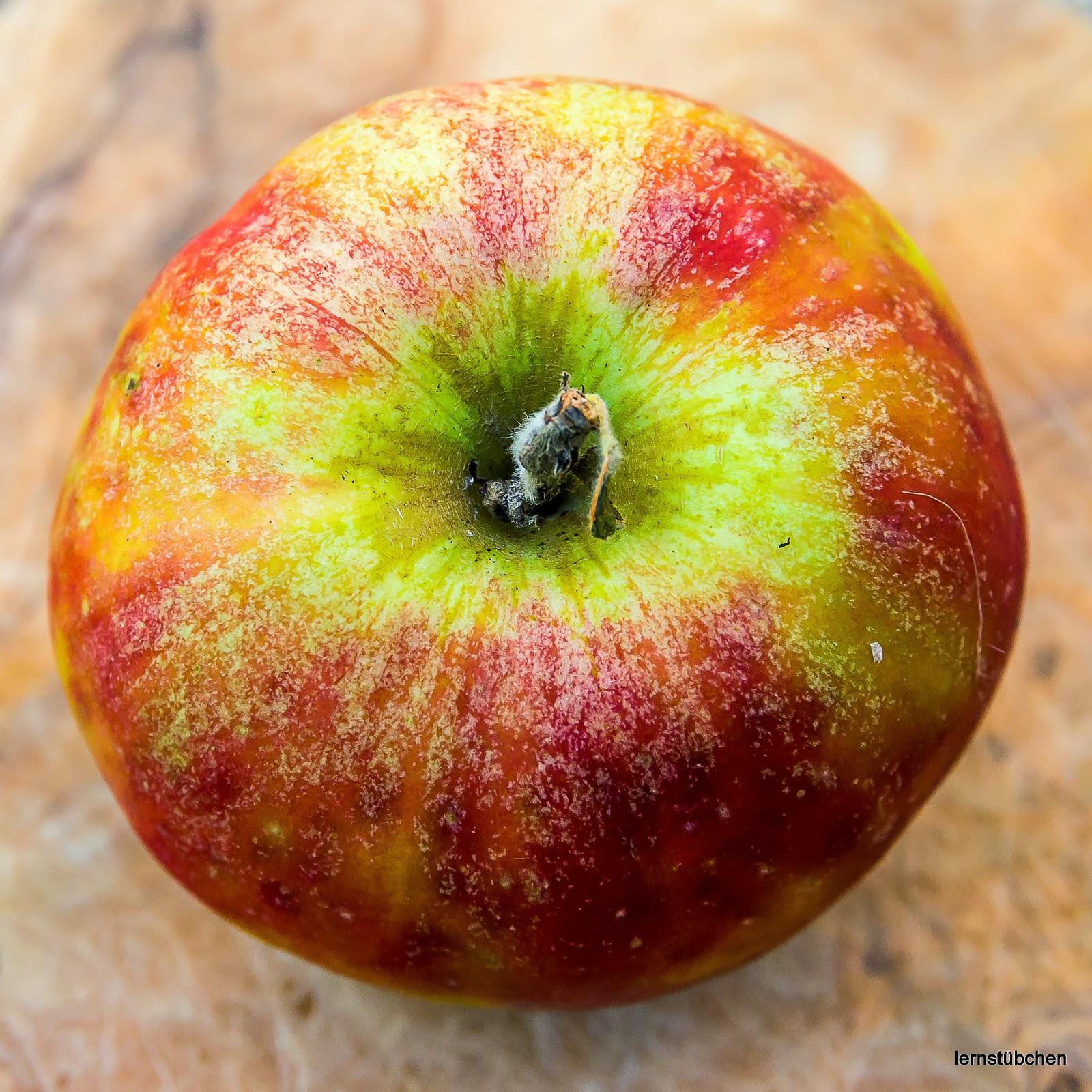 Lernstübchen: ich bleibe beim Apfel