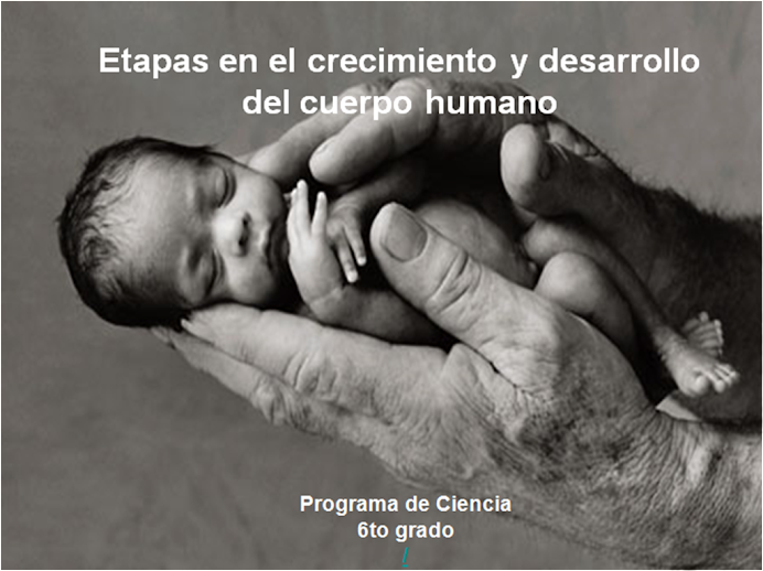 Etapas del crecimiento y desarrollo humano