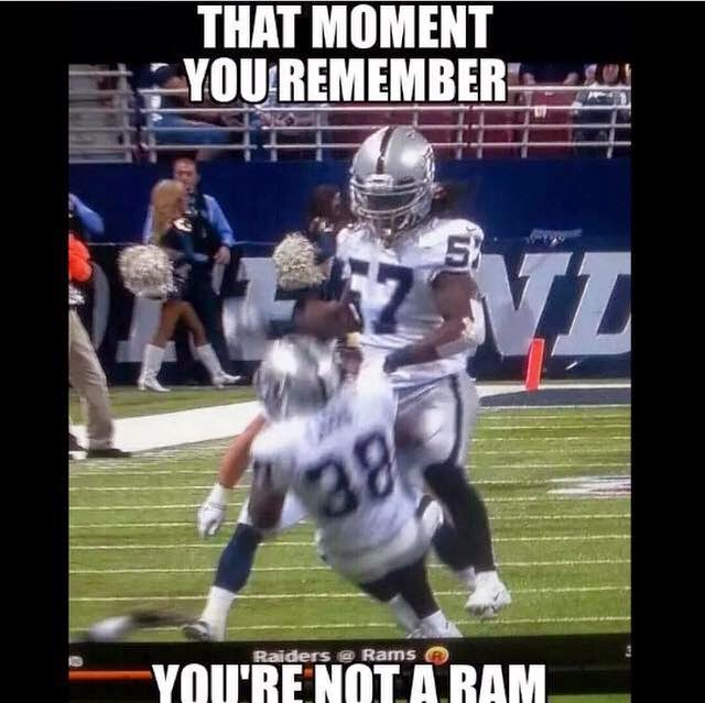 that moment you remember you're not a ram. #raiders #ramshaters