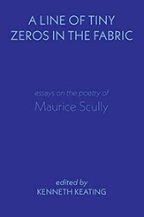 A Line of Tiny Zeros in the Fabric: Essays on the Poetry of Maurice Scully