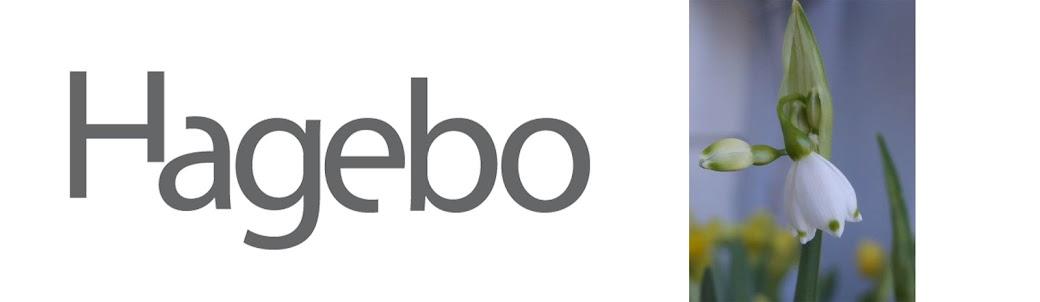 Hagebo