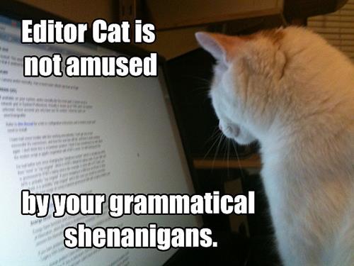 Editor+Cat bea's book nook cat thursday editor cat is not amused