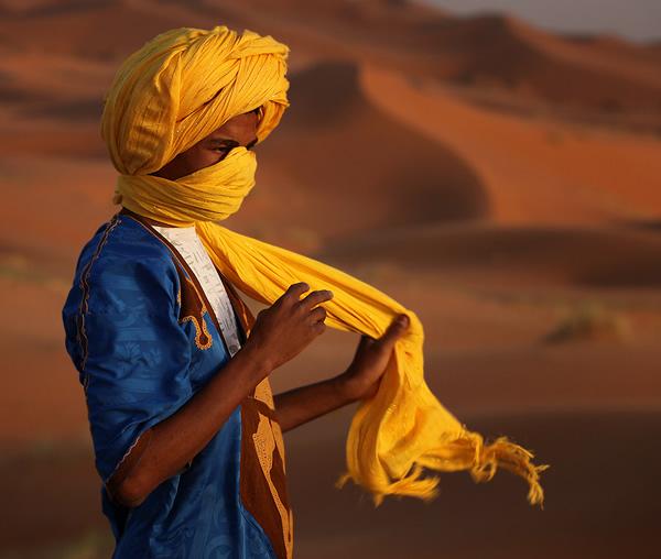 Beautiful Yellow Photos