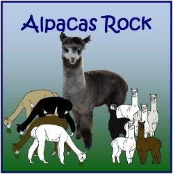 My Newest Website - Alpacas Rock