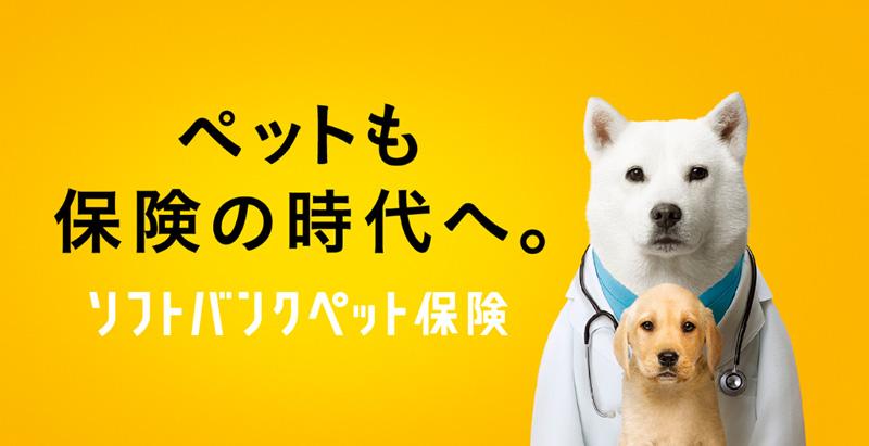 ソフトバンクがペット保険を提供開始。犬と猫が対象。ワイモバイルの一部機種のユーザーも対象
