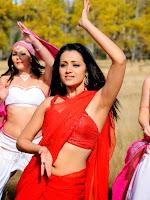 Trisha Krishnan photos from Namo Venkatesha-cover-photo