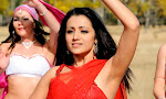 Trisha Krishnan photos from Namo Venkatesha-thumbnail
