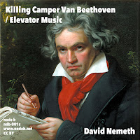 David Nemeth - Killing Camper Van Beethoven / Elevator Music