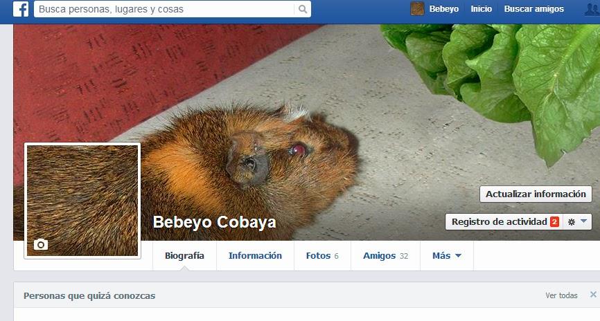 Perfil hoax en facebook
