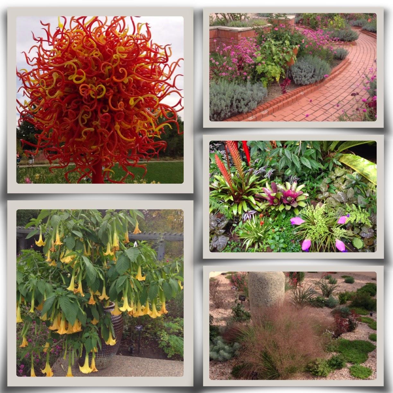 Central Virginia Organic Gardener: Field Trip: Denver