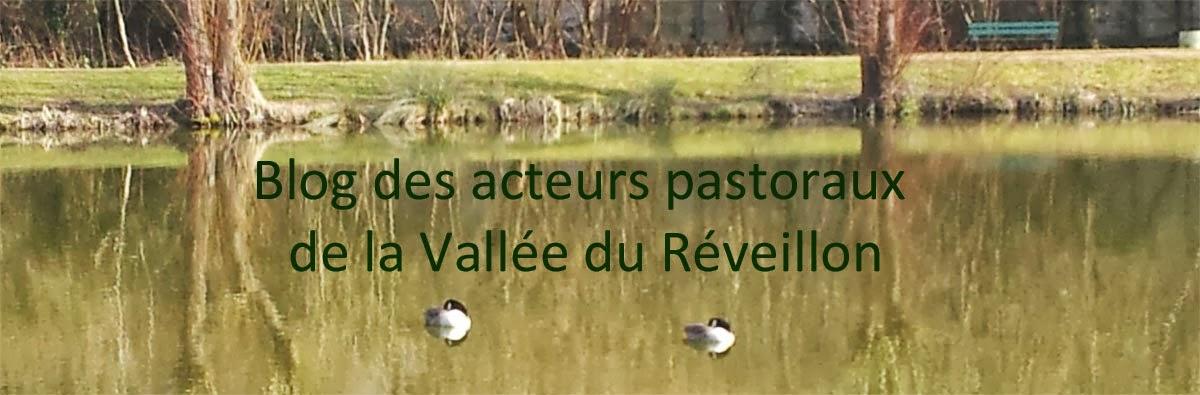 Blog des acteurs pastoraux de la Vallée du Réveillon