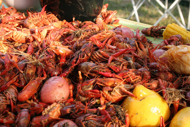 how to eat crawfish correctly