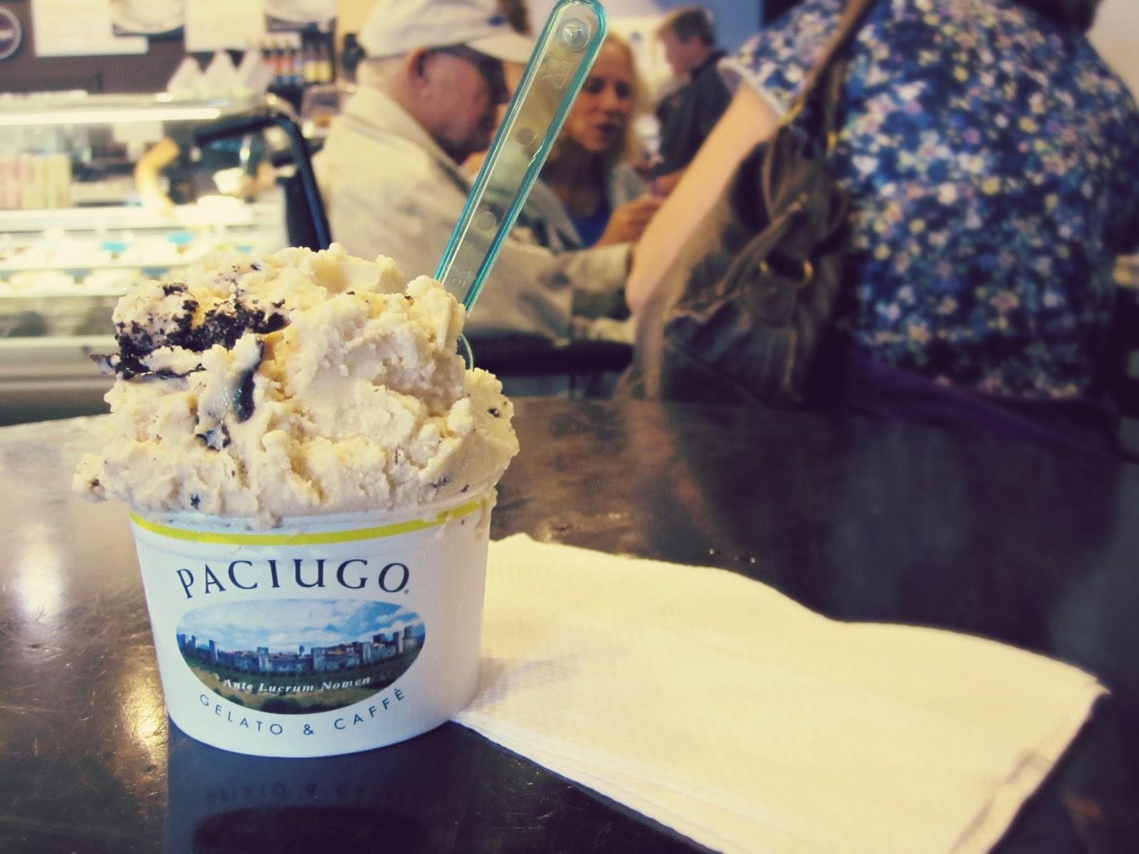 Spring Break In Florida, gelato, paciugo, frozen yogurt recipe