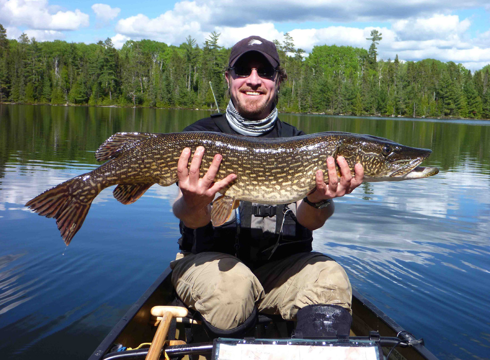 Piragis northwoods company boundary waters blog quetico for Boundary waters fishing