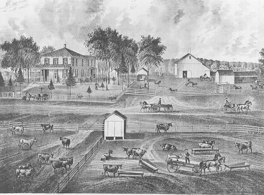 the different changes during the industrial revolution in america Eli whitney another inventor born in america in 1765, made another key invention of the industrial revolution, the cotton gin (picture to the right) which was invented in 1794 a cotton gin is a machine that quickly separates cotton fibers from their seeds.